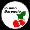 Elezioni Comunali 2013 - Simbolo Lista Io Amo Bareggio
